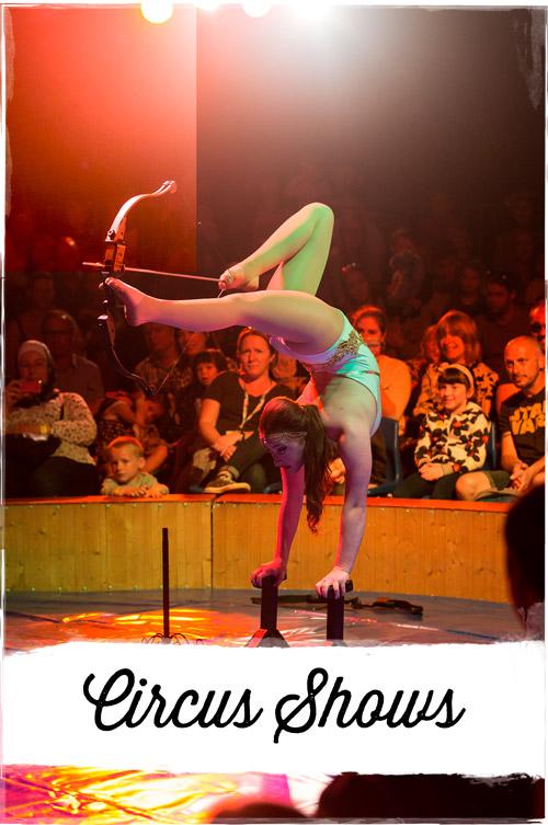 Circus-Shows.jpg
