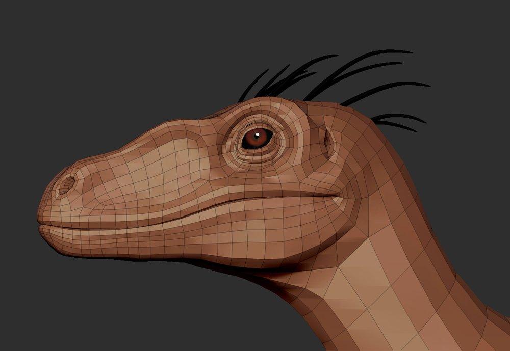 raptor13.jpg