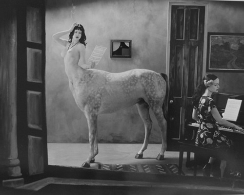 headless-horse :     Joel-Peter Witkin