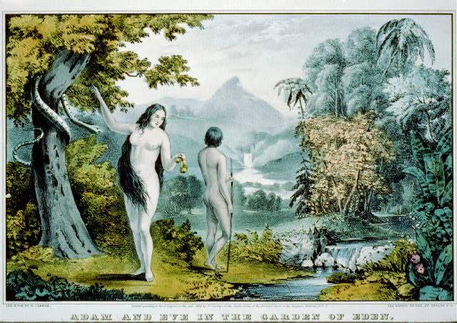 boyhood :     Adam and Eve in the Garden of Paradise