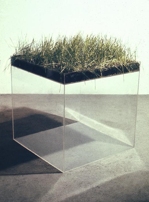 gallowhill :      Hans Haacke  -Grass Cube, 1967