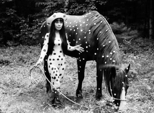 rust-neversleeps :      Yayoi Kusama   Polka dot horse