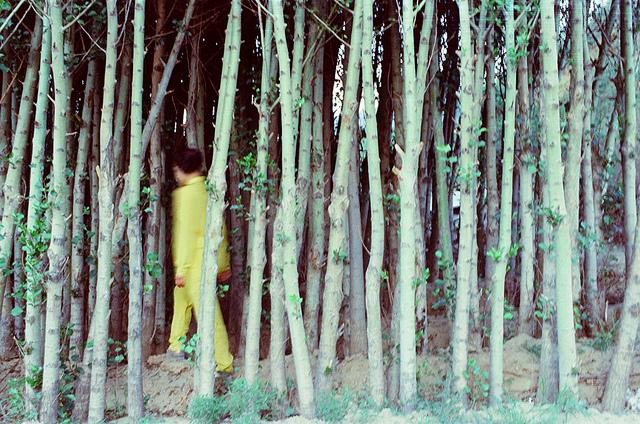 aerbor :      sin título  by  Shuwei.Liu  on Flickr.