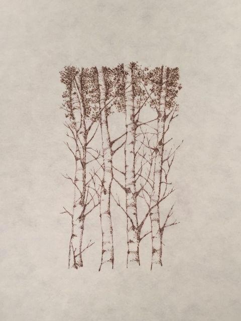 """John Saurer    Aspen   Branded Paper Drawing, Thai Mulberry Paper  30"""" x 22""""  CJS0026"""