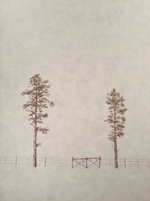 """John Saurer    Barbed Wire Pines   Branded Paper Drawing, Thai Mulberry Paper  30"""" x 22""""  CJS0028"""