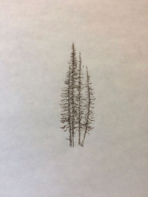 "John Saurer    Hyalite Pines   Branded Paper Drawing, Thai Mulberry Paper  30"" x 22""  CJS0029"