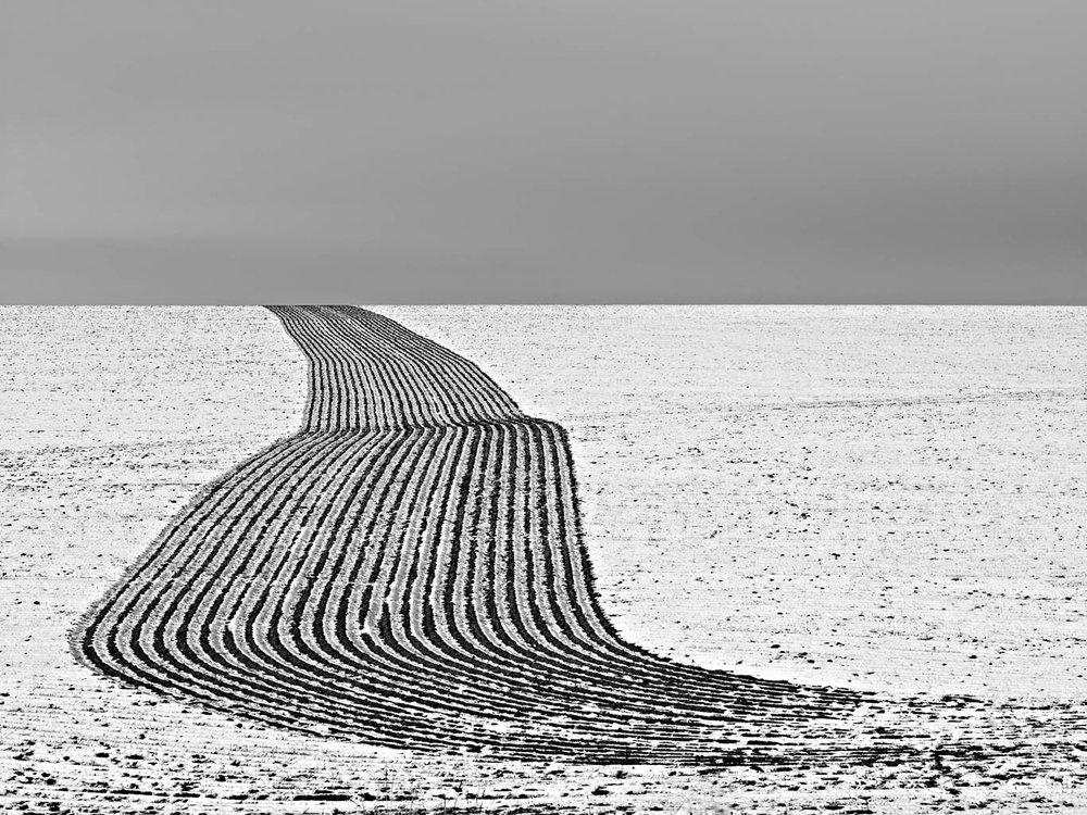 "Jeff Corwin    Winter Plow Lines   Wilbur, Washington  24"" x 35""  CJC0005"