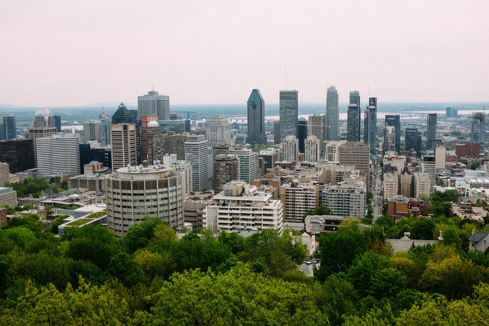 View of Montreal from...Mont Royal!