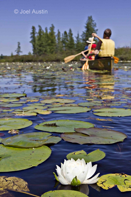 Caroline Lake canoe 1.jpg