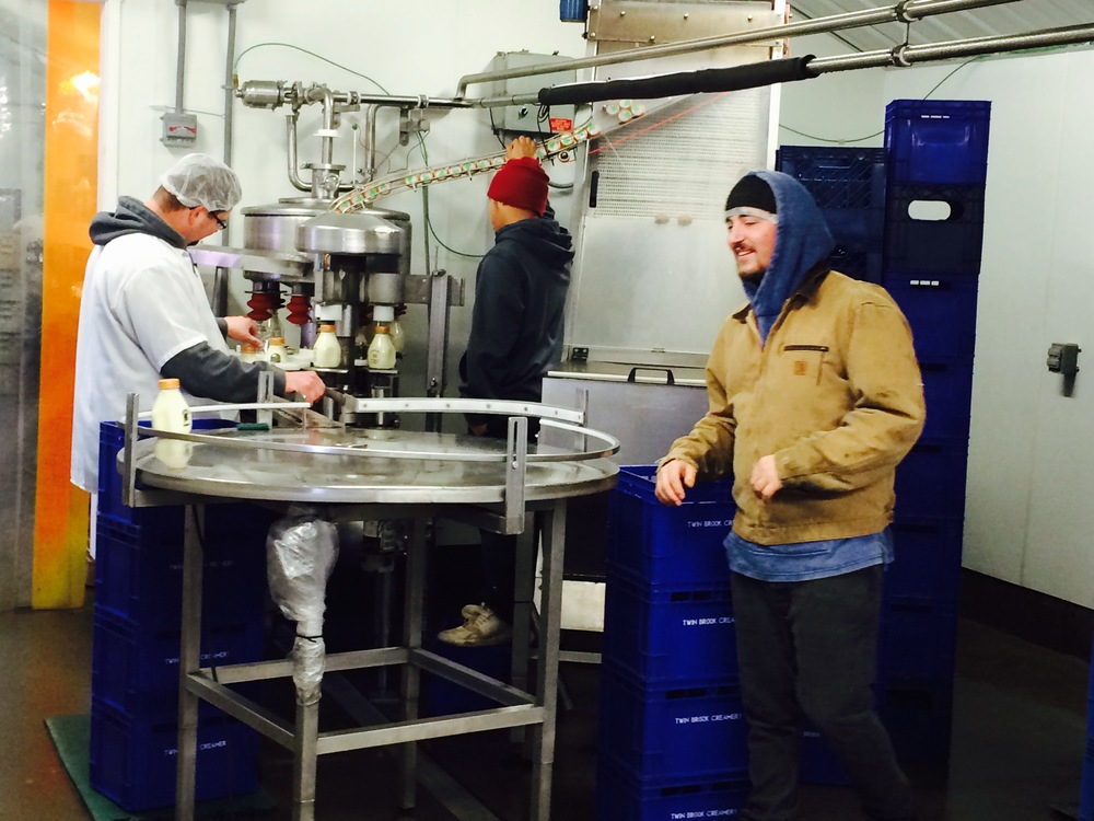 Dairy workers at Twin Brook Creamery, Lynden, WA. Photo by William Dixon, 2015.