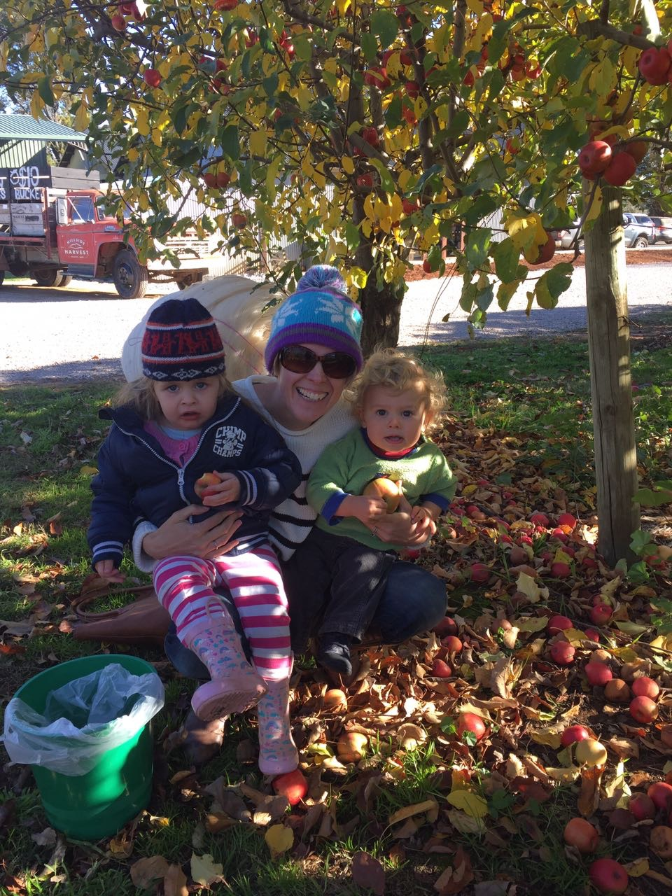 apple picking in orange - family friendly activities.