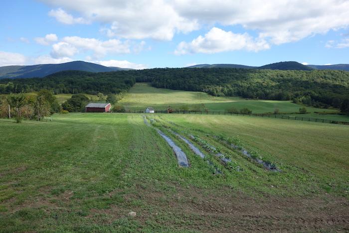 Green River Farm, Williamstown, MA