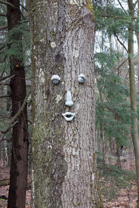Trees-23.jpg