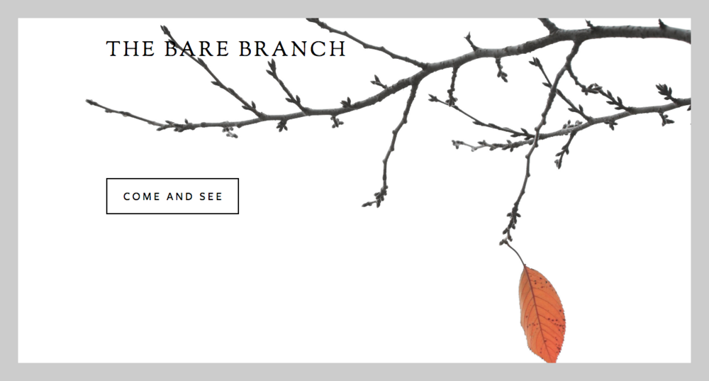 The Bare Branch, Jacksonville, FL