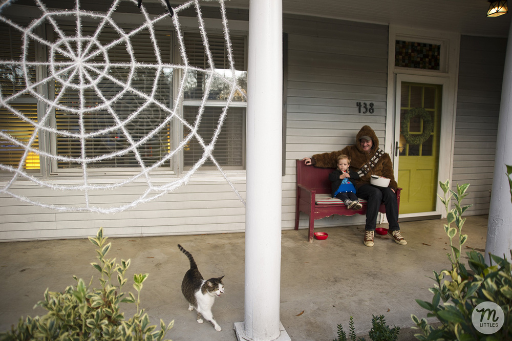 We decorated our porch with a giant spider web I bought on clearance last year at Target. I bought three more this year on clearance, so I'm excited to cover our porch with them next year!