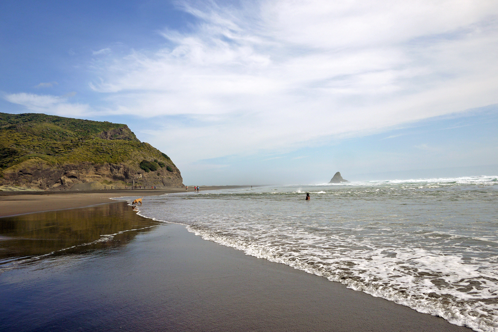 The west coast of Auckland is lined by rugged, dramatic black sand beaches. Piha is the most renowned. It's a beautiful yet eerie place. The rip tides are unforgiving; many people die here each year.