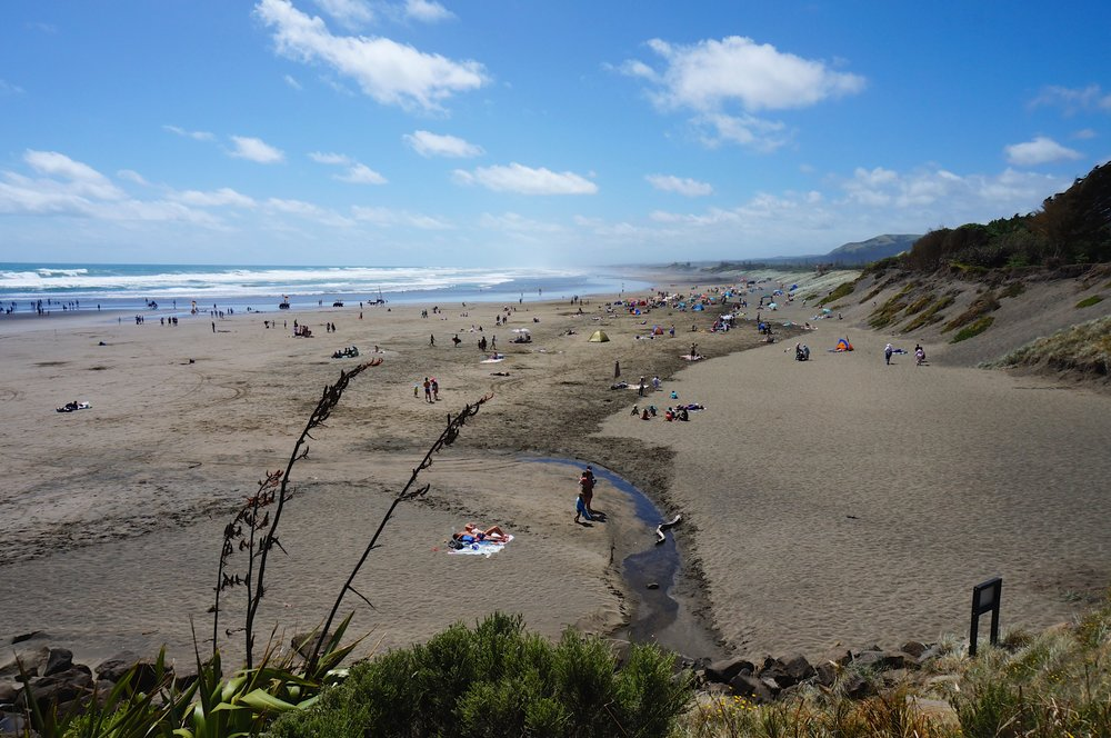 The most popular surf spot in West Auckland. You can buy fresh strawberry ice cream down the road but the line often goes out the door