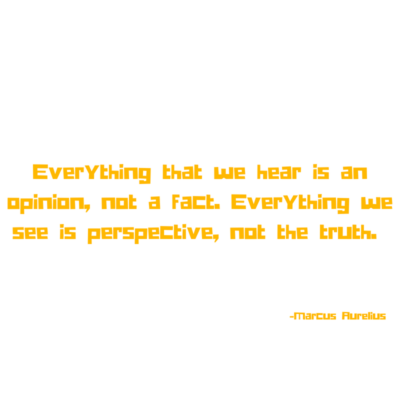 Everything that we hear is an opinion, not a fact. Everything we see is perspective, not the truth..jpg
