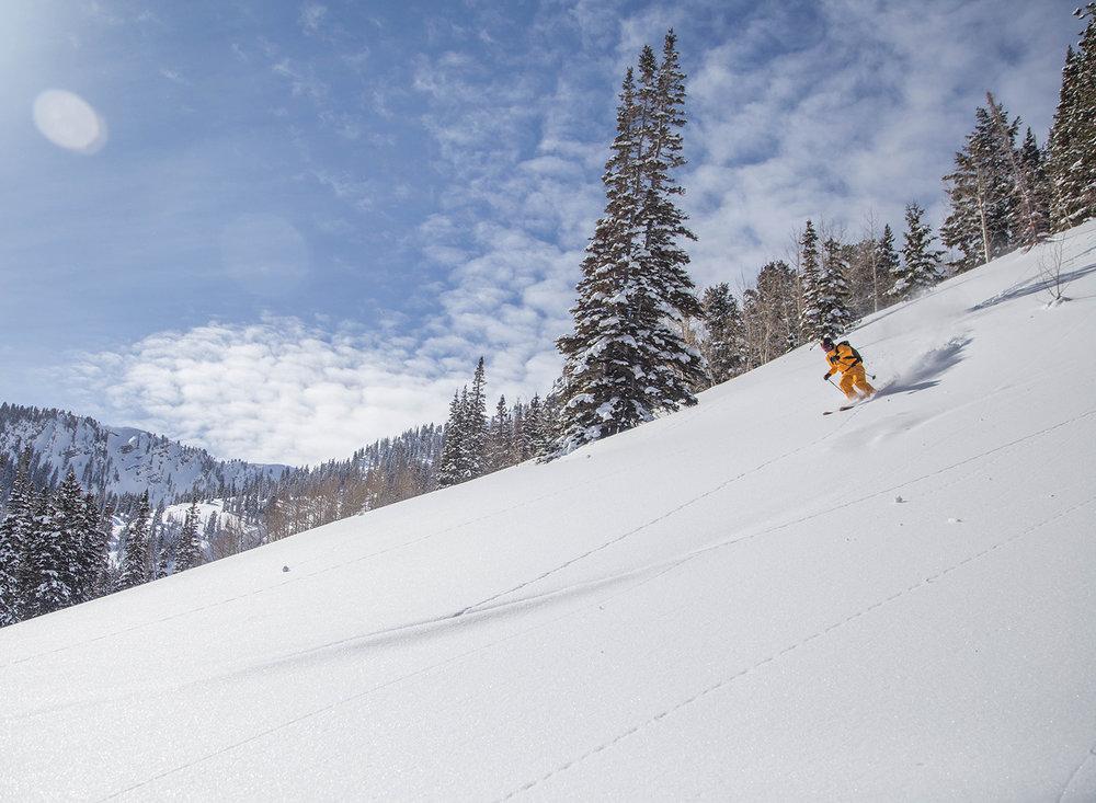 burke-alder-backcountry-skiing-photos-days-draw.jpg