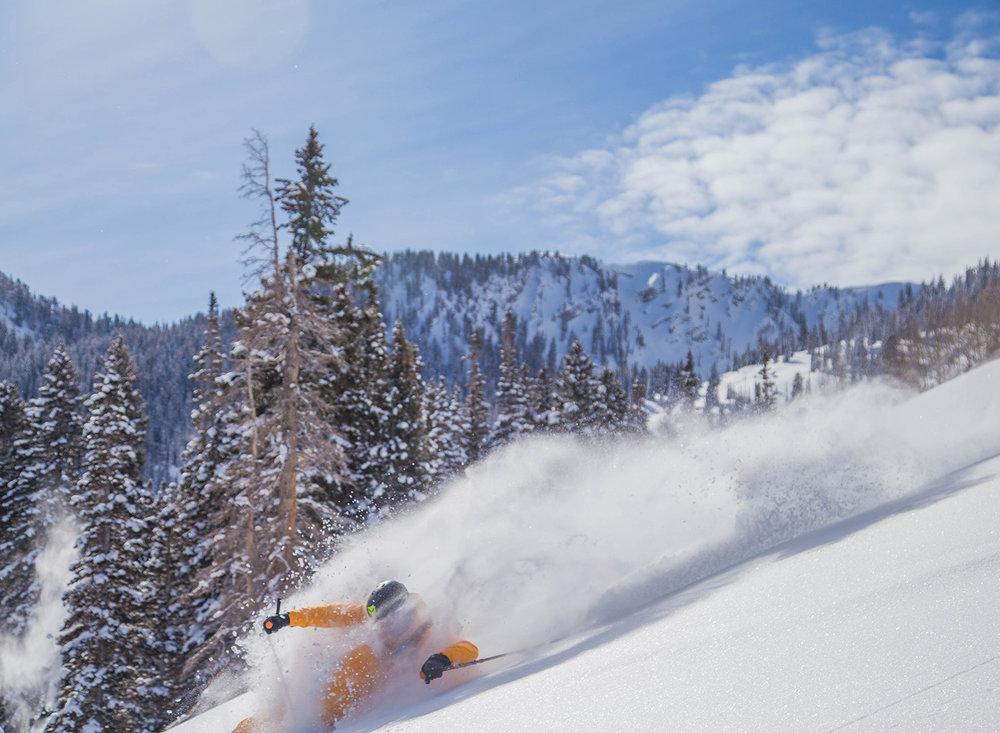 burke-alder-backcountry-powder-skiing-picturs-days-fork-utah.jpg