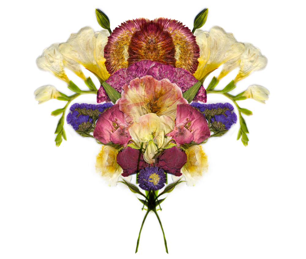 flowershow1.jpg