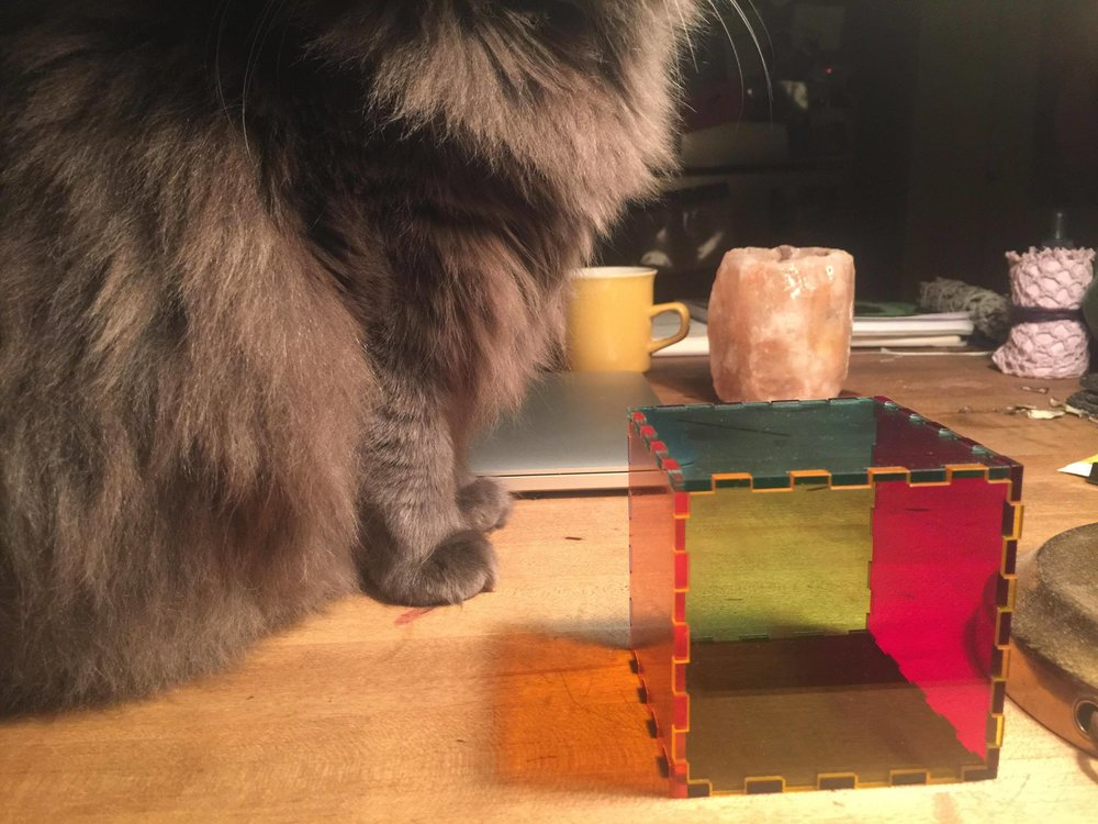 Final cube - pre-glueing, but held in place: Cat for scale.
