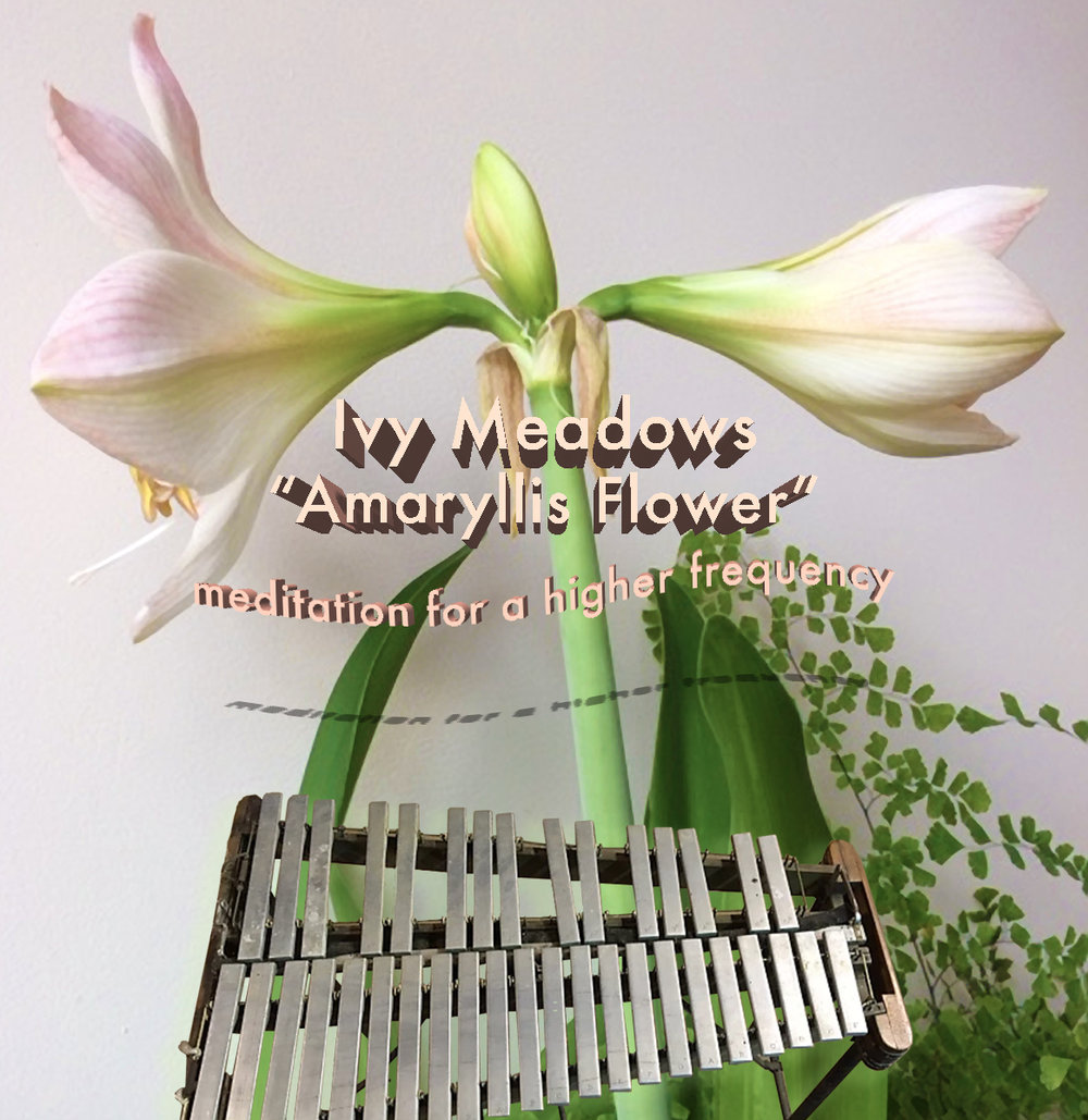 ivymeadows_meditationforahigherfrequency.jpg