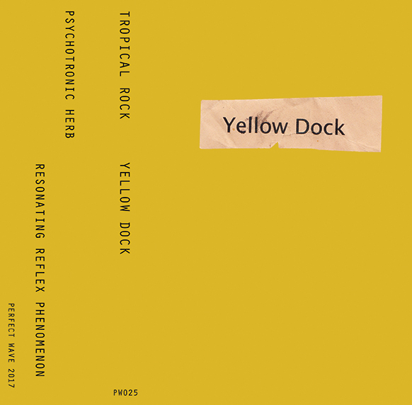Tropical Rock 'Yellow Dock' Cassette