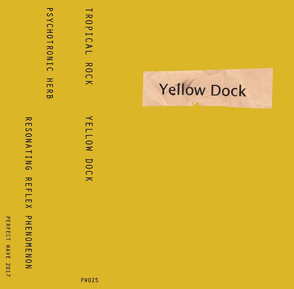 Tropical Rock 'Yellow Dock' Cassette PREORDER
