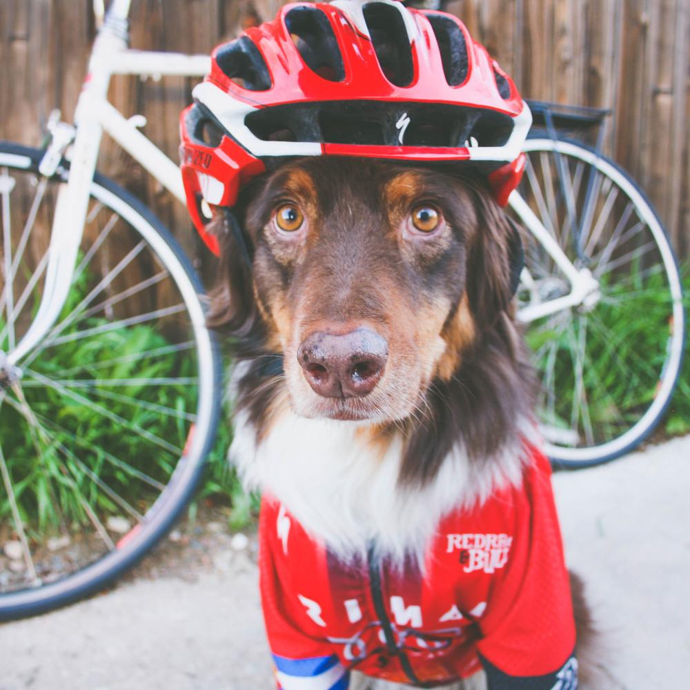 Hobbes_Bike.jpg
