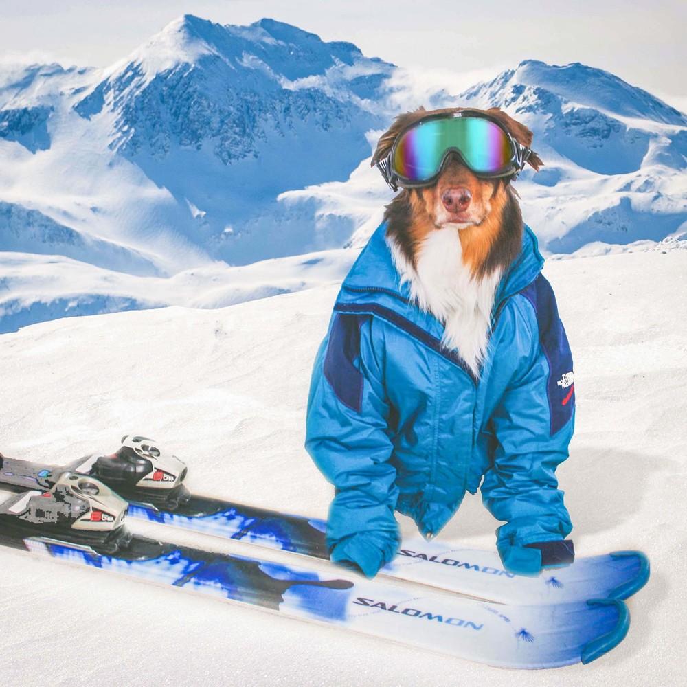 Hobbes_Ski.jpg