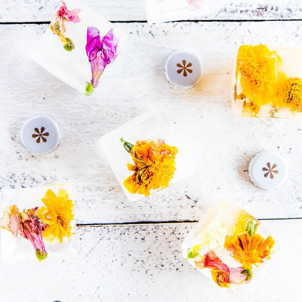 FlowerIceCubes_instagram_6.jpg
