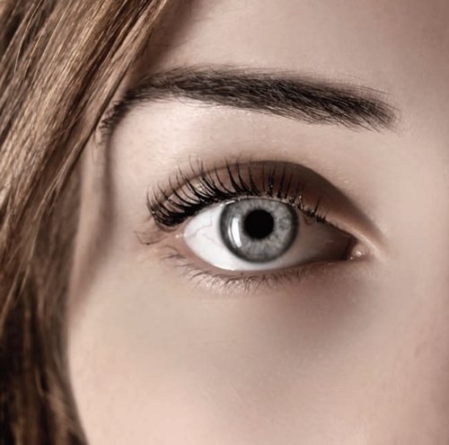 lash-lift-treatment-campbell.jpg