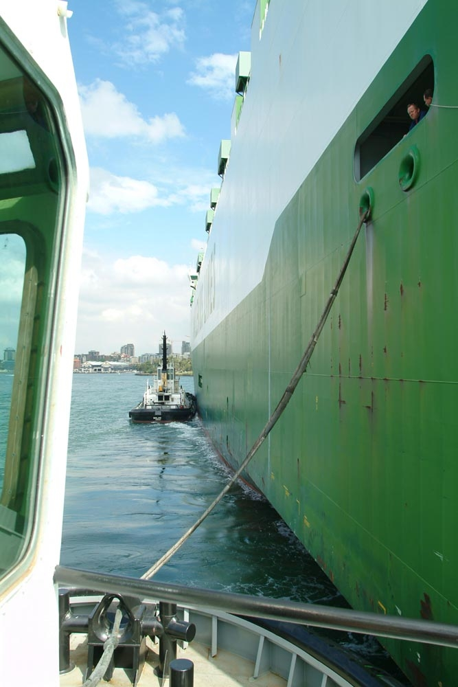 Tug Boats ... Sydney harbour