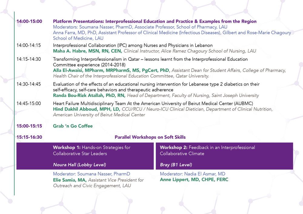 LAU IPE Final Program5.jpg