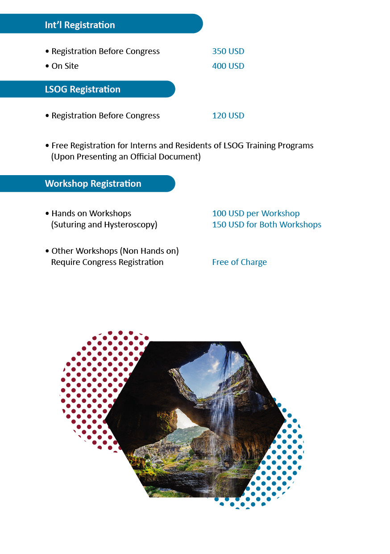 MESGE Program11.jpg