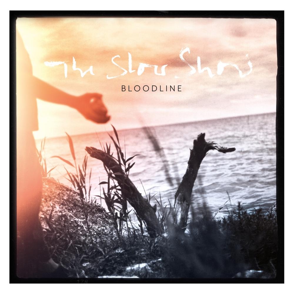 Bloodline cover.jpg