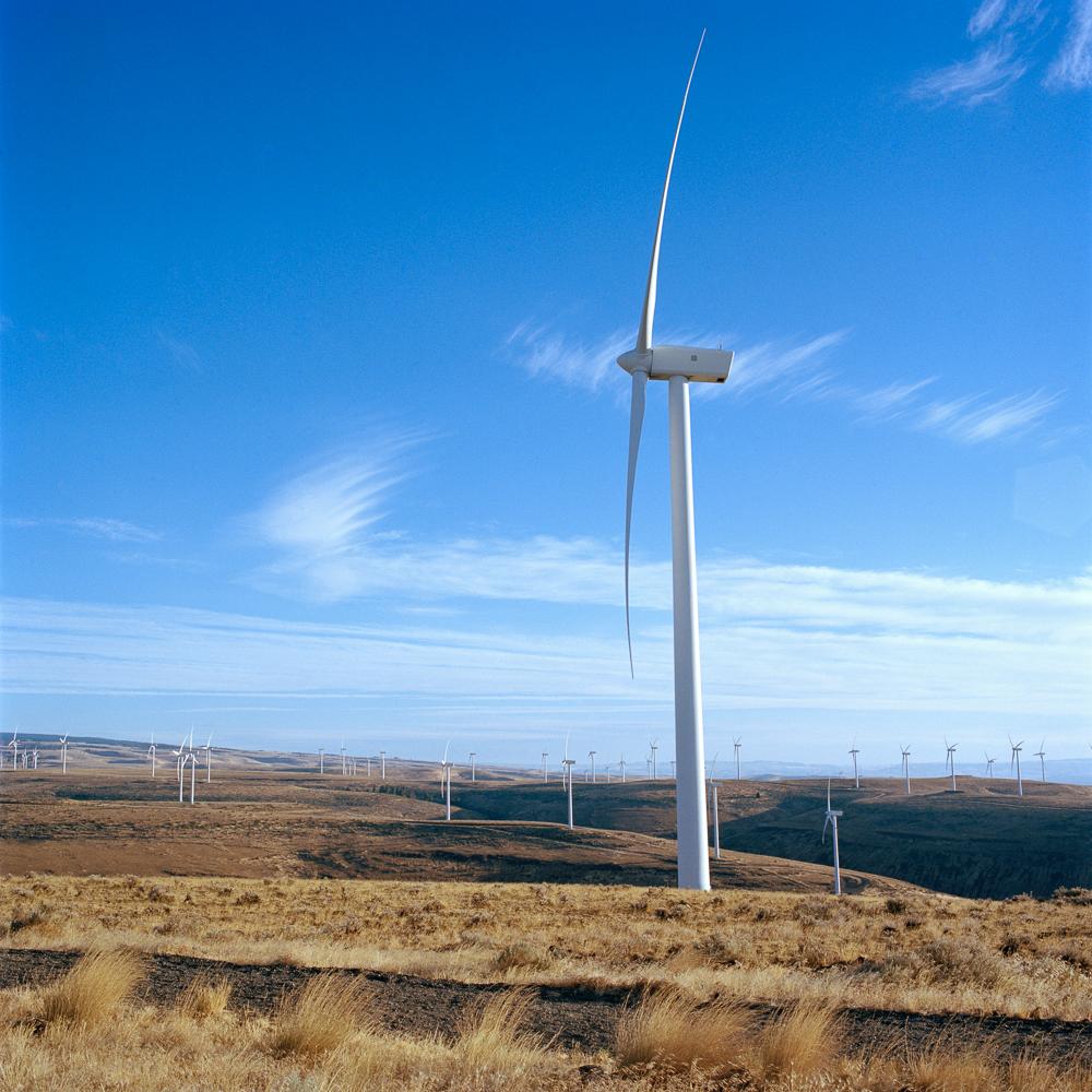 RenewableEnergies.jpg