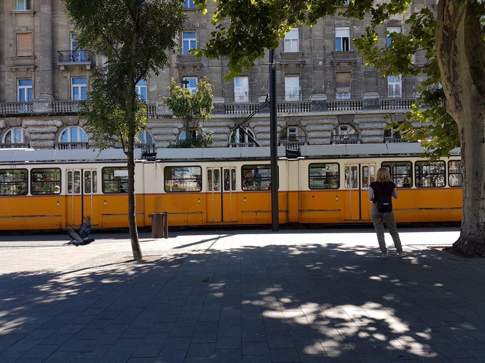 Tranvía en el Parlamento de Budapest