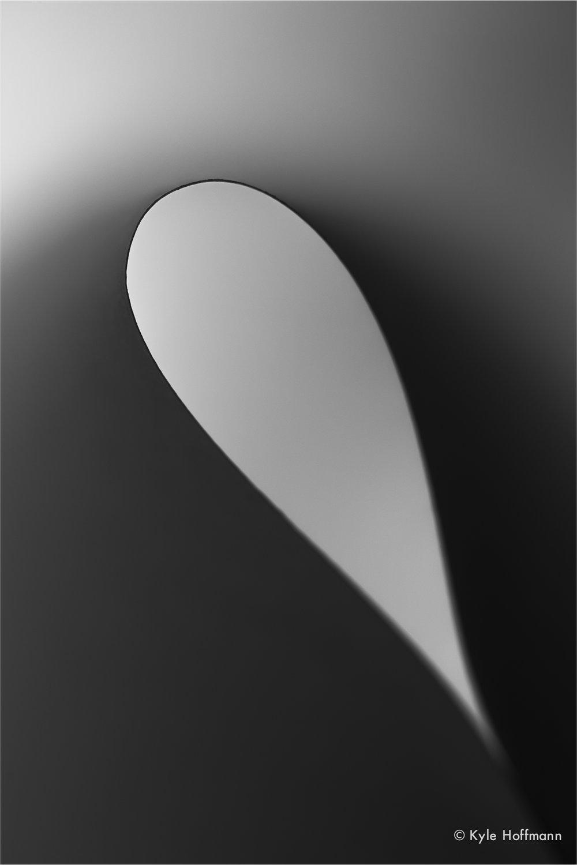 archetypewebverts-03.jpg