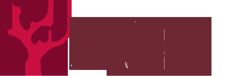 LogoMadNova.png