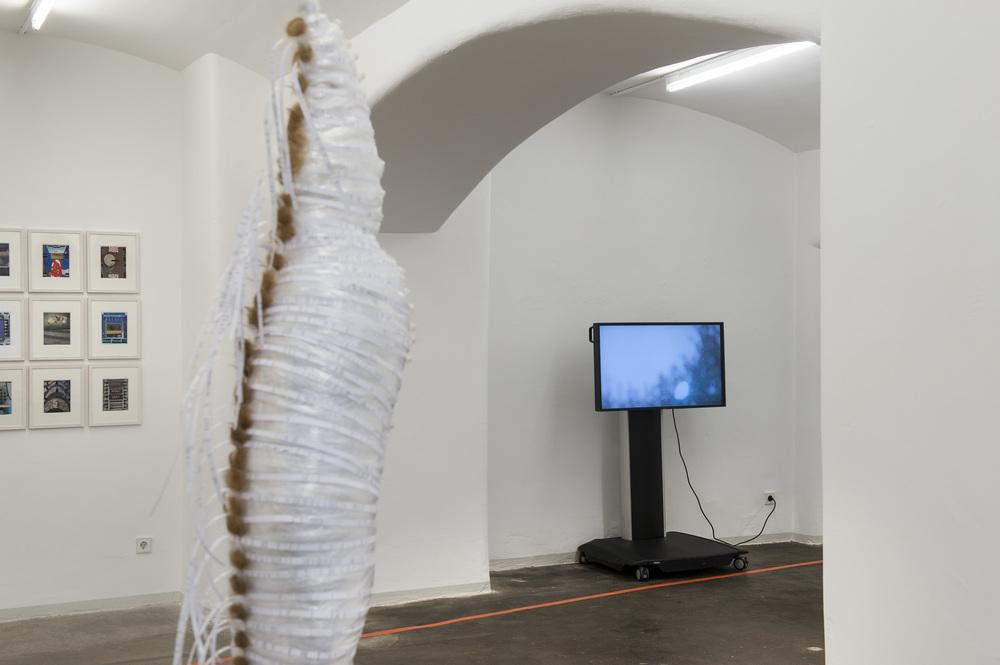 Video: Fanding Sun, MIDDLE LAYER FANTASY, 2015, Städtische Galerie Reutlingen, 2016, Photo: Karl Scheuring, Reutlingen
