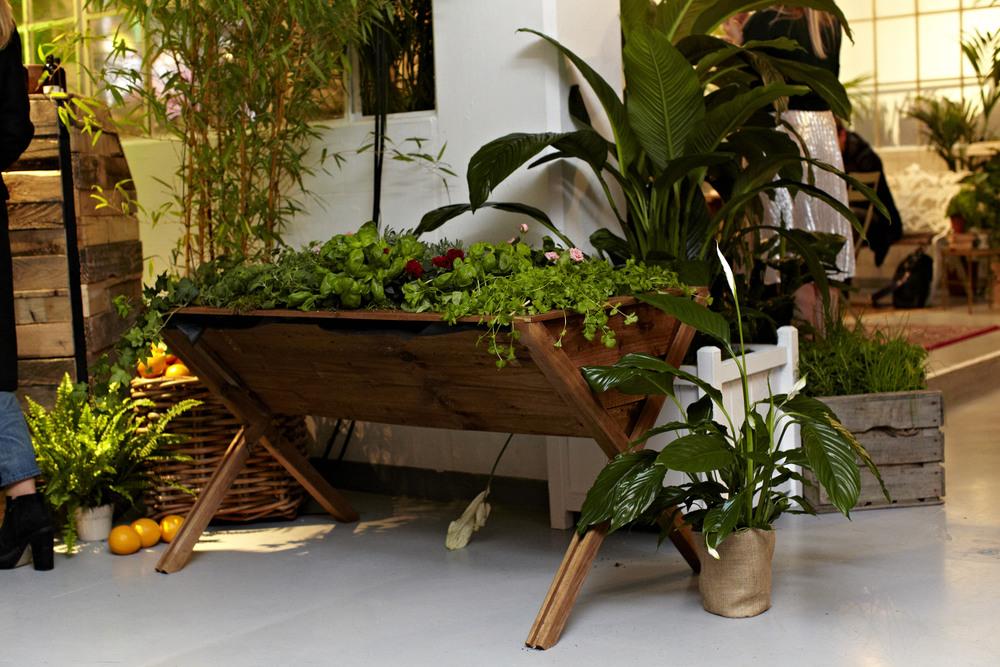 wooden manger trough