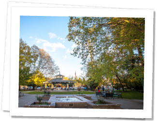 Healdsburg is the cutest kind of town to visit, Healdsburg is centered around a central square park surrounded by local, artisanal food establishments, shops and wine tasting rooms featuring products of the Dry Creek Valley wine country.