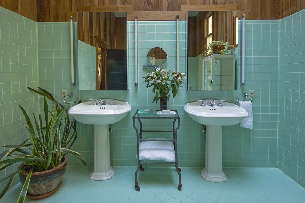bathroom-sinks- Schoolhouse_BathroomTwoSinks_RitaCranePhoto.jpg