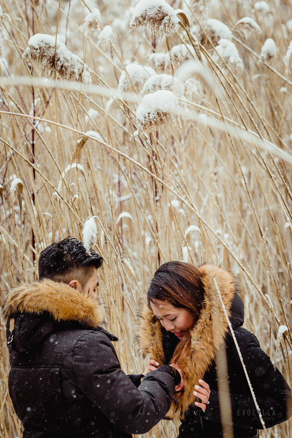 engagement photos winter