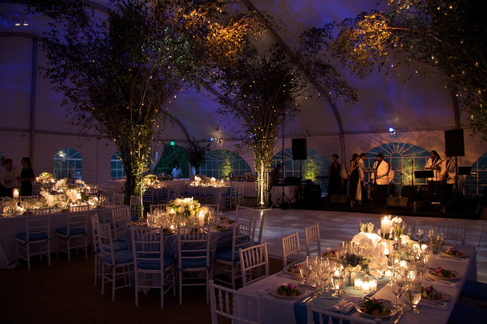 Karpf Wedding  1.jpg