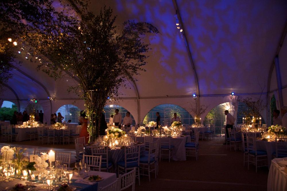 Karpf Wedding  4.jpg