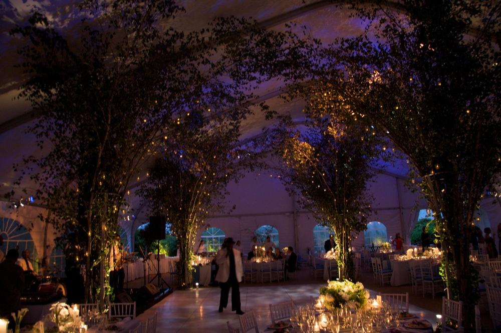 Karpf Wedding  5.jpg