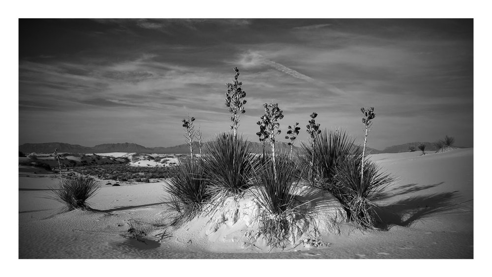 (Black and) White Sands.